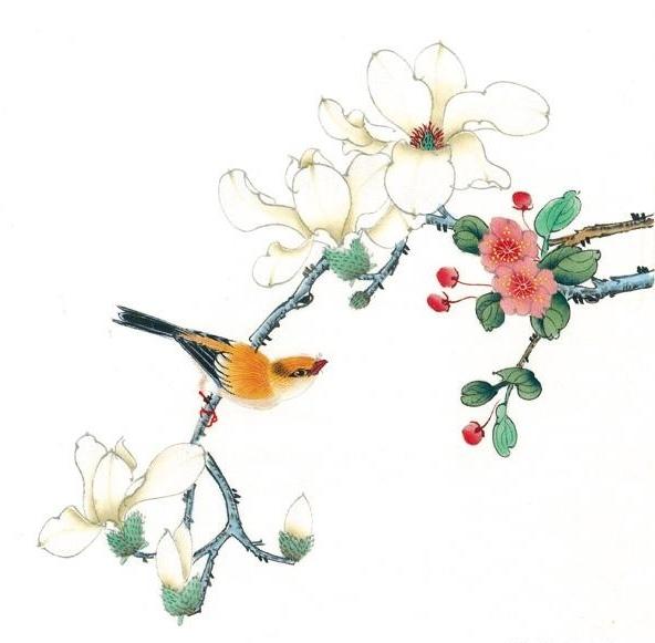 中国传统花鸟工笔画