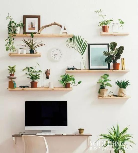 墙面收纳的6种方法