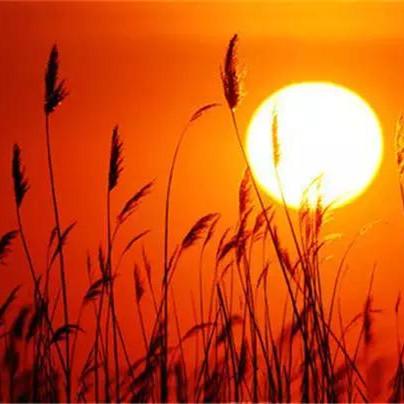 中国最美的日出,你欣赏过几个?