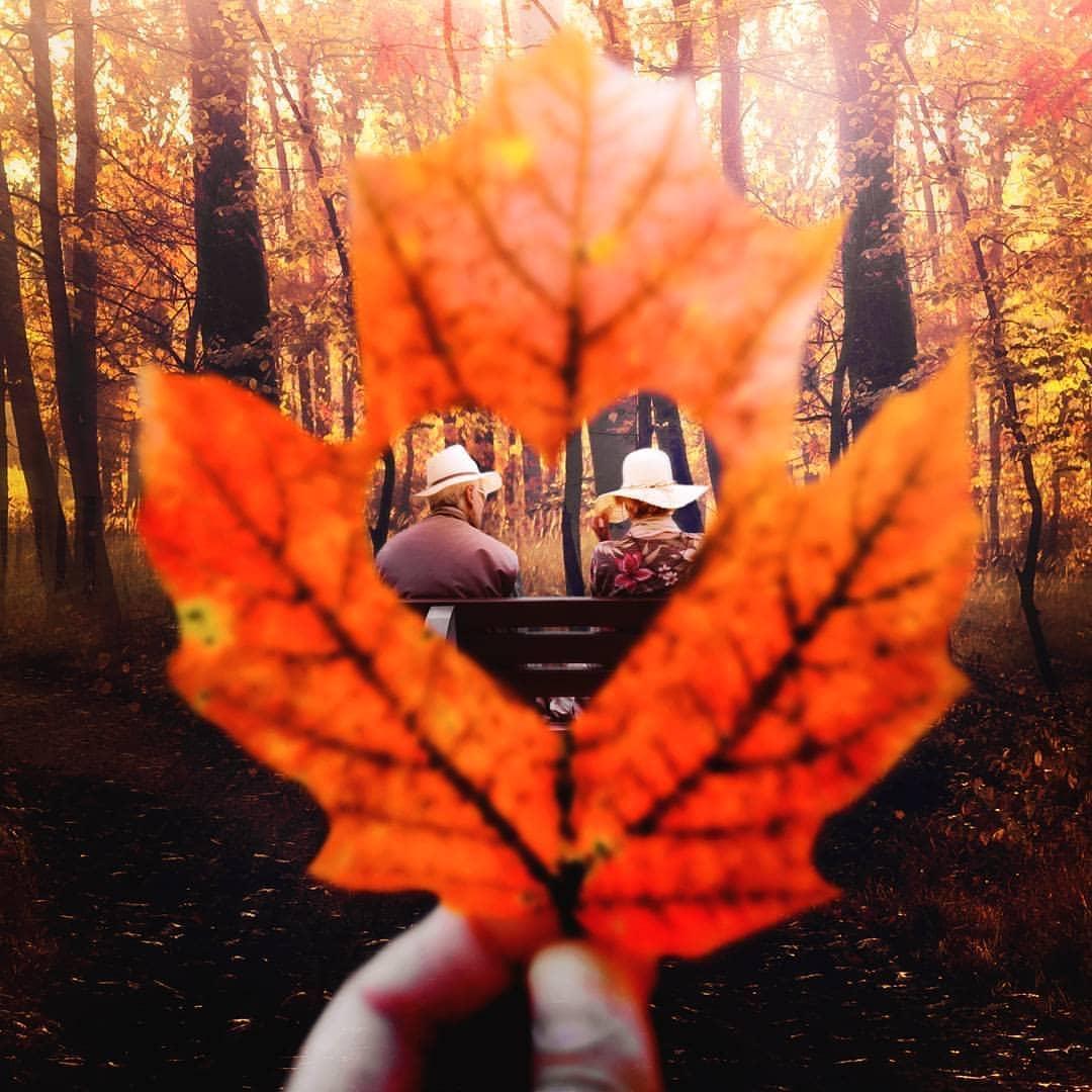 一叶知秋,看摄影师如何拍摄秋天!