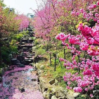 春节旅游,2月国内最美旅行地推荐!